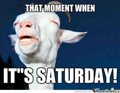 Pleased Saturday Memes – Autotak