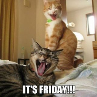 Amusing Friday Memes – Autotak