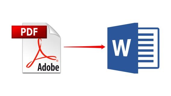 Exactly how to duplicate a table from PDF to Word