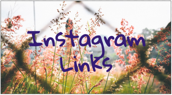 Can I include a web link to my Instagram blog post?