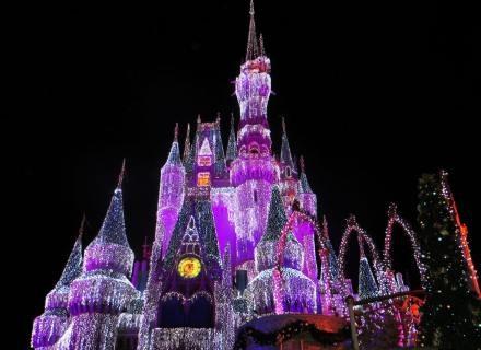 Ideal Disney Love Prices Estimate for Instagram